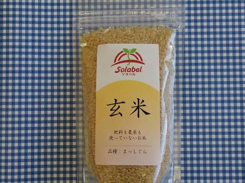 自然栽培♡玄米:300g