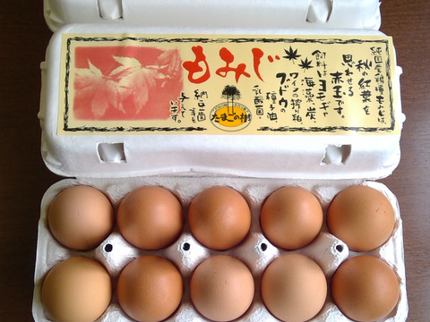 10個入れパック入り国産鶏種もみじの新鮮たまご27個(30個入り3個割れ保障、10個入れ3パック)