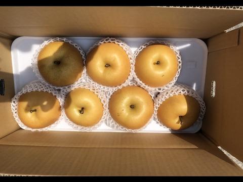 豊水梨 約4kg(6~10玉)
