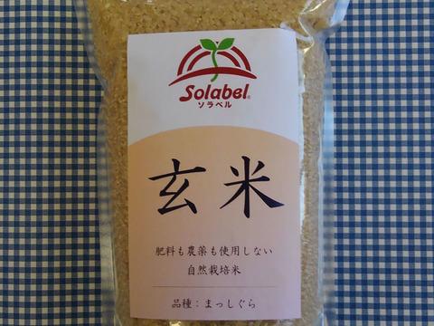 【セット】♥玄米1kgと味噌500g♥