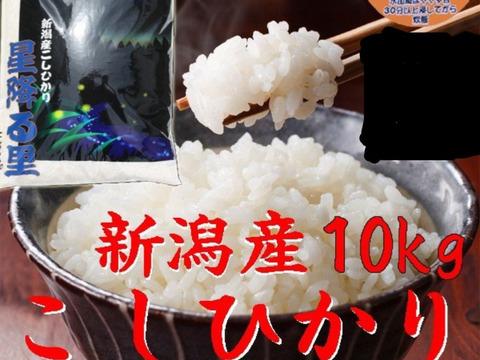 コシヒカリ  10kg  無洗米 令和二年産