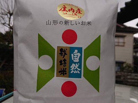 【 白米・10kg 】米の旨味たっぷり 自然栽培米 つや姫