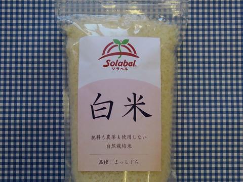 自然栽培♡白米(8分つき):1kg