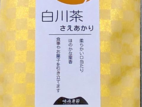 新茶の白川茶 品種茶さえあかり 季節で飲み比べ  2袋セット