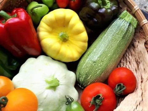 カラフル7♪農家にお任せ!今が旬のカラフルセブン野菜BOX【初回限定BOX】