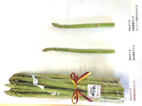 即納【期間限定】冷蔵庫に入らないかも?!?!超ロング40cm、太〜い2Lサイズ1kg 約15本 香川県産アスパラガス『さぬきのめざめ』