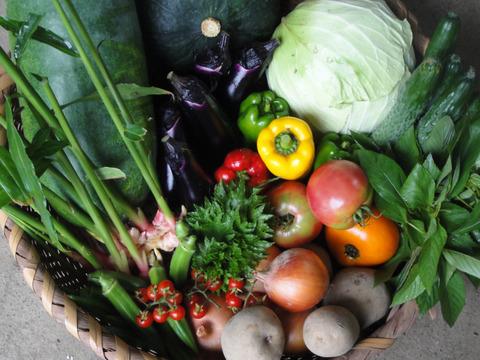 小川町の野菜+穀物+加工品セット(4〜6人分)