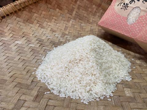 【リオレのレシピ付き】美味しい丹波篠山新米コシヒカリ5kg🌾