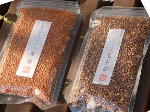 〈ポストに投函〉赤米ともち麦よりどり合計6つ【無農薬・無肥料 自然栽培 天日干し】