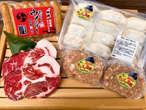 【バラエティー】あぐー豚お試しセット(4種)+お試しやんばるあぐー豚切り落とし(1kg)