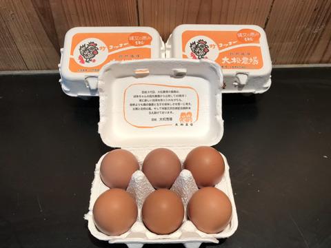 大松農場たまご 「大松のもみじ」【6個×3パック】鶏卵 自然そのままの味わい ※クール便