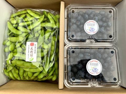 【おまけ付】 無農薬・化学肥料不使用栽培今が旬のブルーベリー&風味豊かな枝豆