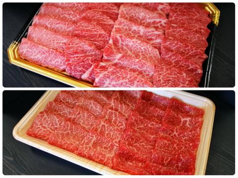 肉ソムリエが厳選したさつま福永牛A5ランク黒毛和牛焼肉【上カルビ・赤身】(800g)【熨斗付き】