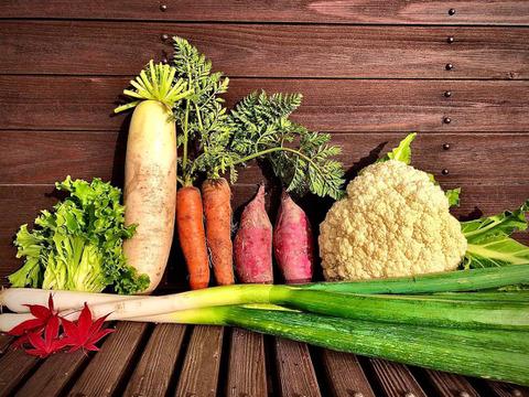 【有機栽培】旬の野菜セット【5~6品】【60サイズ箱】