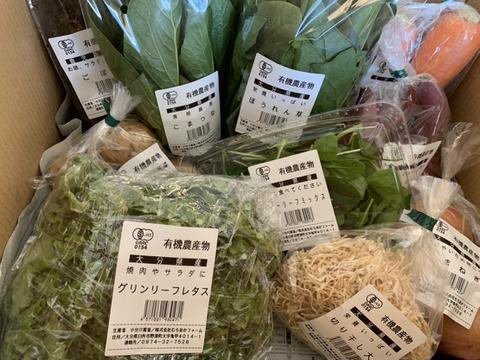 JAS認証むらおかファームのおまかせ旬の有機野菜セット(10~12品)