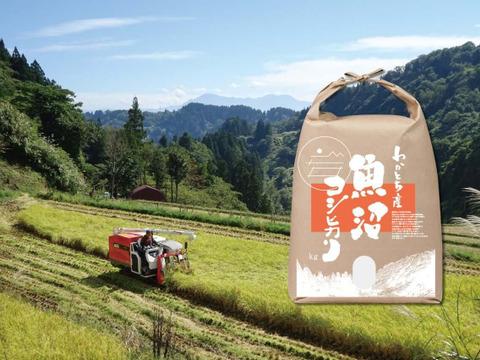 【期間限定でおまけ付き:新潟県認証米】標高200mの棚田で育てた魚沼コシヒカリ(5kg)