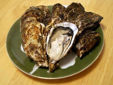 「ザ・広島ブランド」(むき身500g殻付き10個)セット 草津かき お歳暮・冬ギフトにも![熨斗付き]牡蠣