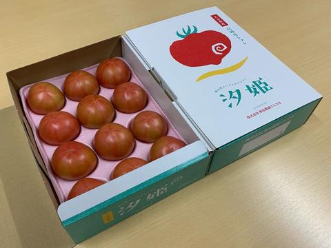★★★最高級の高糖度『汐姫トマト』1kg化粧箱入り(E)