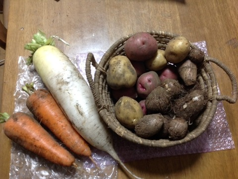 自然栽培 冬の根菜4種6品種食べ比べセット(4㎏)