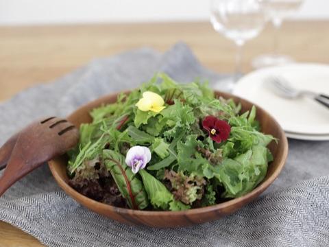 鮮度抜群!9~11種のシャキシャキ野菜のサラダセット(70g×5つ)【栽培期間中農薬不使用】