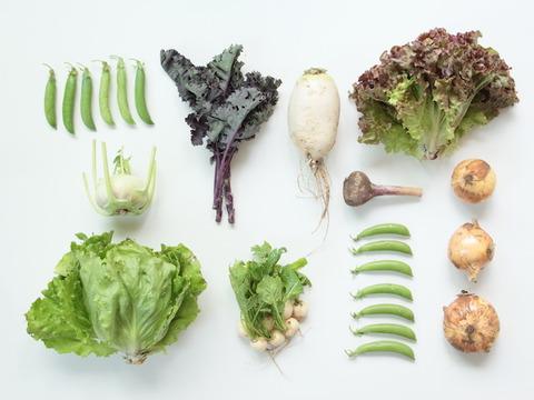 自然栽培野菜セット(8品)+豆菓子(1袋)セット