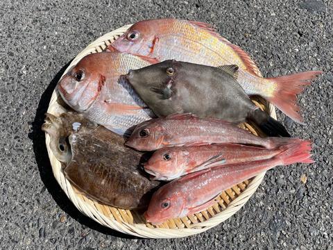 【数量限定】瀬戸内の鮮魚 2kg詰め合わせ!(80サイズ)