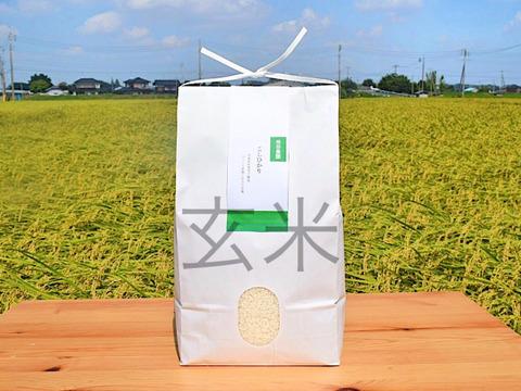 ふっくら食感と甘さが自慢!茨城県産こしひかり10kg【玄米】【新米】