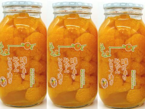 【3本セット】 三ヶ日みかん シロップ漬け ビン詰900g 静岡県産