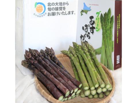 【北海道産】家族用!食べ比べアスパラセット!グリーンアスパラ・紫アスパラ Lサイズ(2㎏)各1kgずつ