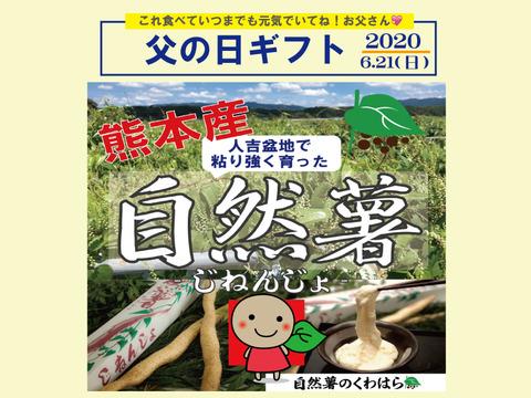【父の日ギフト予約受付用】熊本産!くわはら農園の自然薯カット物1kg前後 レシピ付き!