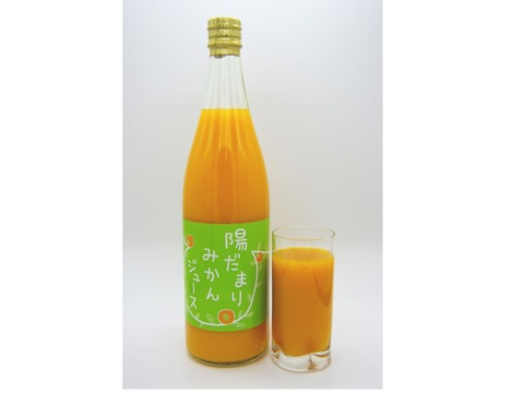 陽だまりファーム  三ヶ日青島みかんジュース ストレート100%(720ml×1本)