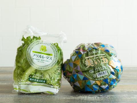 【大好評】シャキうま!NOUMANN人気野菜セット(5品目)