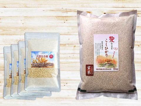 お得な腸活セット 早刈り玄米ともち麦セット こしひかり2kgとキラリモチ250g×4袋 農薬不使用
