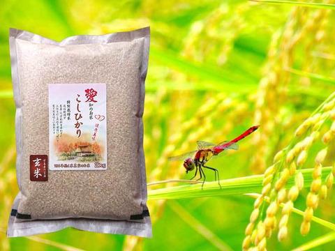 農薬不使用 玄米 20kg(2kg×10袋)新米こしひかり100% 毎日の健康的主食に 備蓄米としても