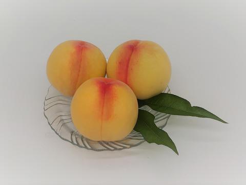 果汁たっぷり!甘みもたっぷり!希少品種・岡山  サンゴールド(1.5kg 5~6玉)