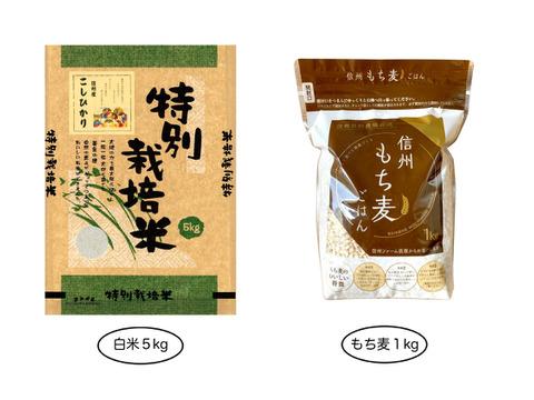 【白米5kg】+【もち麦1kg】残留農薬ゼロ!情熱の結晶よくばりセット 令和2年産