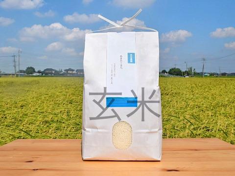 もちもち食感と輝く艶が自慢!茨城県産あきたこまち10kg【玄米】【新米】