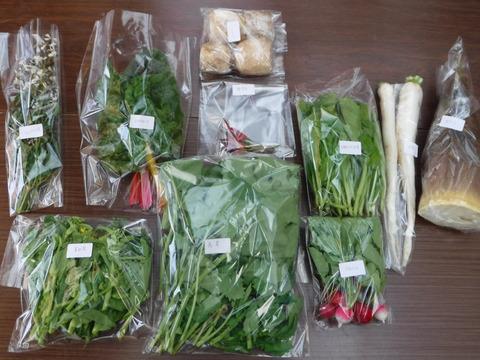 野菜ボックス Sサイズ(約5~7品)