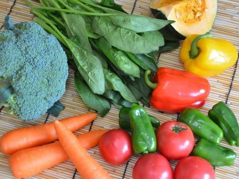 【10名限定】朝採り新鮮椎茸と野菜セット!【8品目以上】