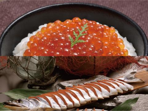 サイトウマサト水産の秋鮭セット【熨斗付き可】