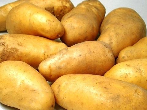 馬鈴薯 メークイン 1㎏/セット
