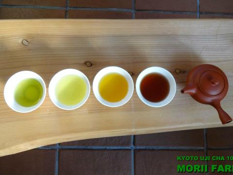 ポンと入れるだけ!ティーパック5種!水出しOK!お得なバラエティーセット!緑茶2種・ほうじ茶2種・京紅茶1種。【特記事項ギフト贈呈用可能】*リピーターさまお好みリクエスト可能♡