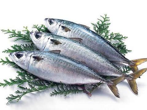 ヒルナンデスで紹介された 刺身で食べる鯖 長崎ハーブ鯖 三枚おろし 2匹分