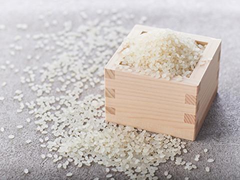 【夕張の水が育む】有機肥料 安心美味 水芭蕉米 むすび(10kg)