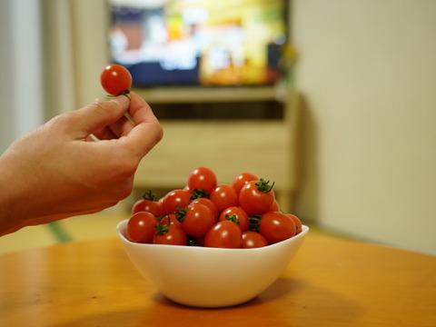 食べ過ぎ注意!大人のおやつに【無限ミニミニトマト】2kg 農カード付