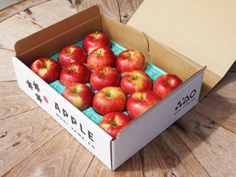 【期間限定】食べきりサイズの小玉りんご「未希ライフ」ご家庭用2kg