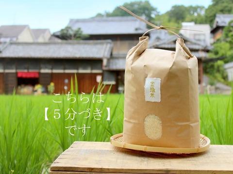 【リオレのレシピ付き】新米【金鵄米/5分づき/5kg】冷めても美味しいヒノヒカリ2021年産きんしまい