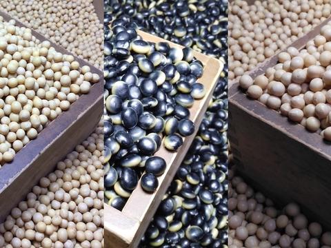 大豆3種 くらかけ豆(285g)とよみづき(285g)ユキシズカ(285g)のセットだぞ!メール便 手選別