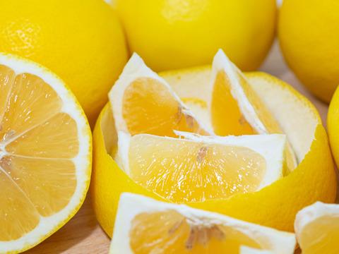 ニューサマーオレンジ 5㎏  (M~LL玉) ※ご家庭用