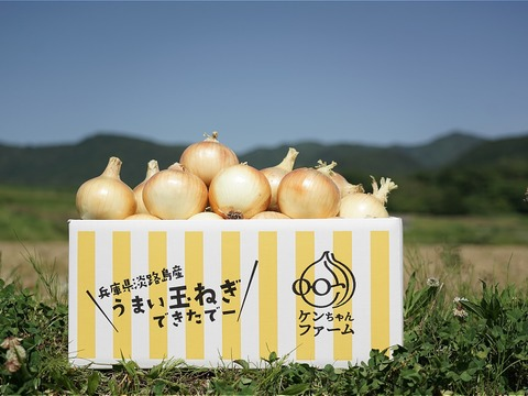 【お陰様でリピーター様多数!】淡路島玉ねぎ 10kg 特別栽培 ひょうご安心ブランド認証取得
